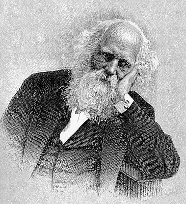 dickinson and william cullen bryant William cullen bryant (1794-1878) contributing  it is interesting to contrast  bryant's earnest view of nature with emily dickinson's ironic one bryant's poem  on.